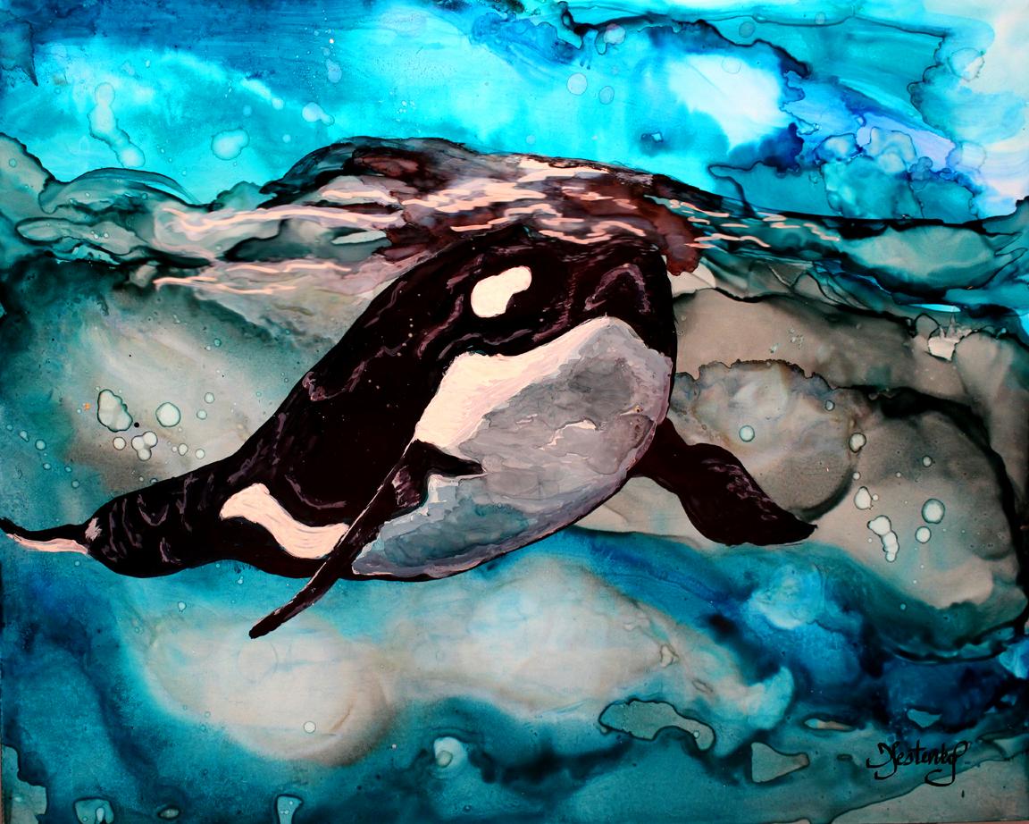 orca surfacing.png