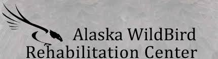 Local Plunge Grant Goes To Alaska Wildbird Rehabilitation Center 3.jpg