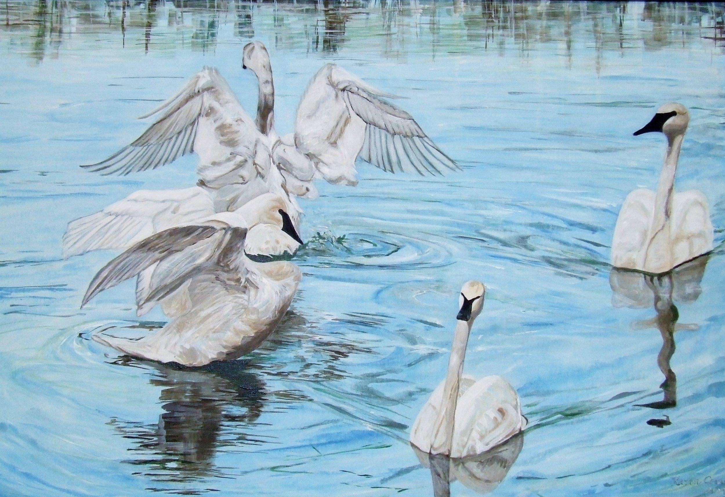 Swans at Birch Lake - Original Acrylic on Canvas