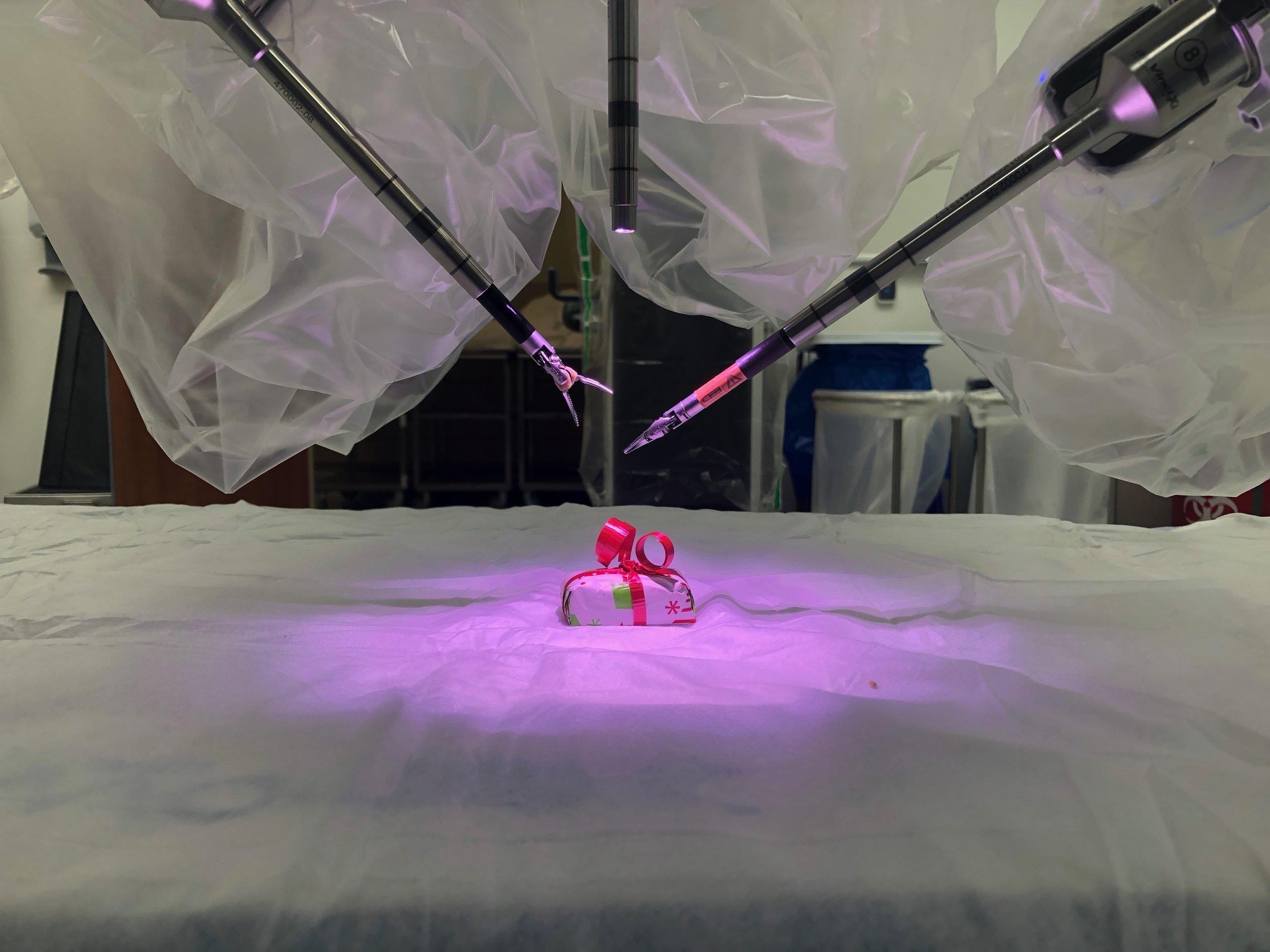 COMMUNITY - Mat-Su Regional Acquires Latest Robotic Surgical Tools (1) WEB.JPG