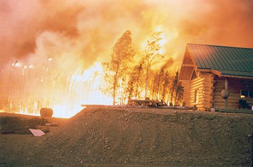 COMMUNITY - Fire Fears (2) WEB.jpg