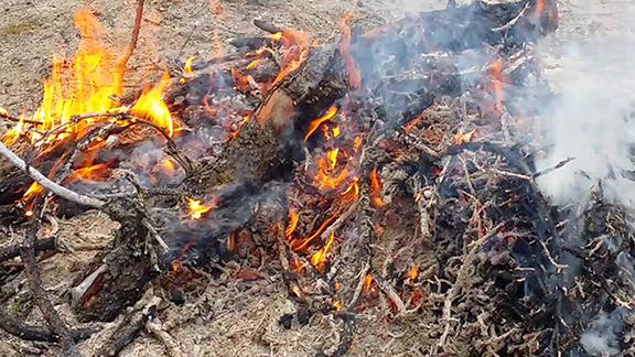 COMMUNITY - Fire Fears (3) WEB.jpg