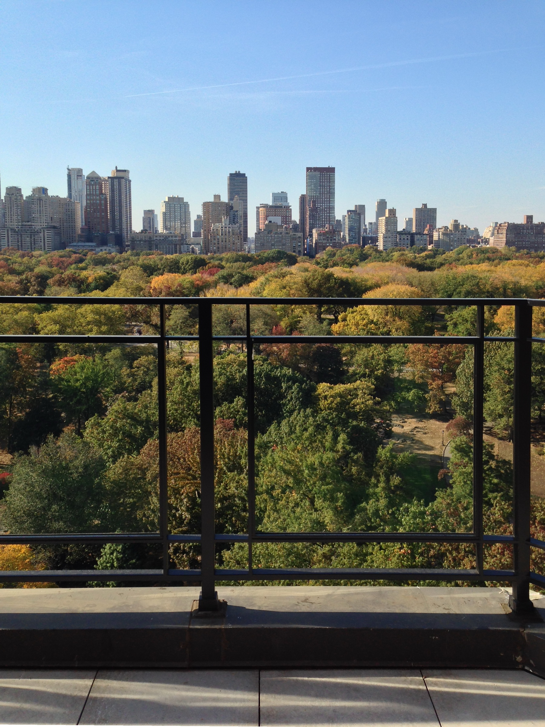 Terrace Railing with Ultra-Transparent Glass overlooking Fifth Avenue and Central Park