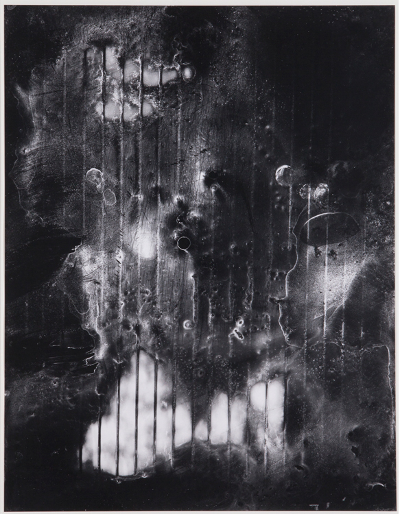 Mold Remediation,  2014  40 x 31 inches