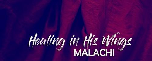 malachi web.png