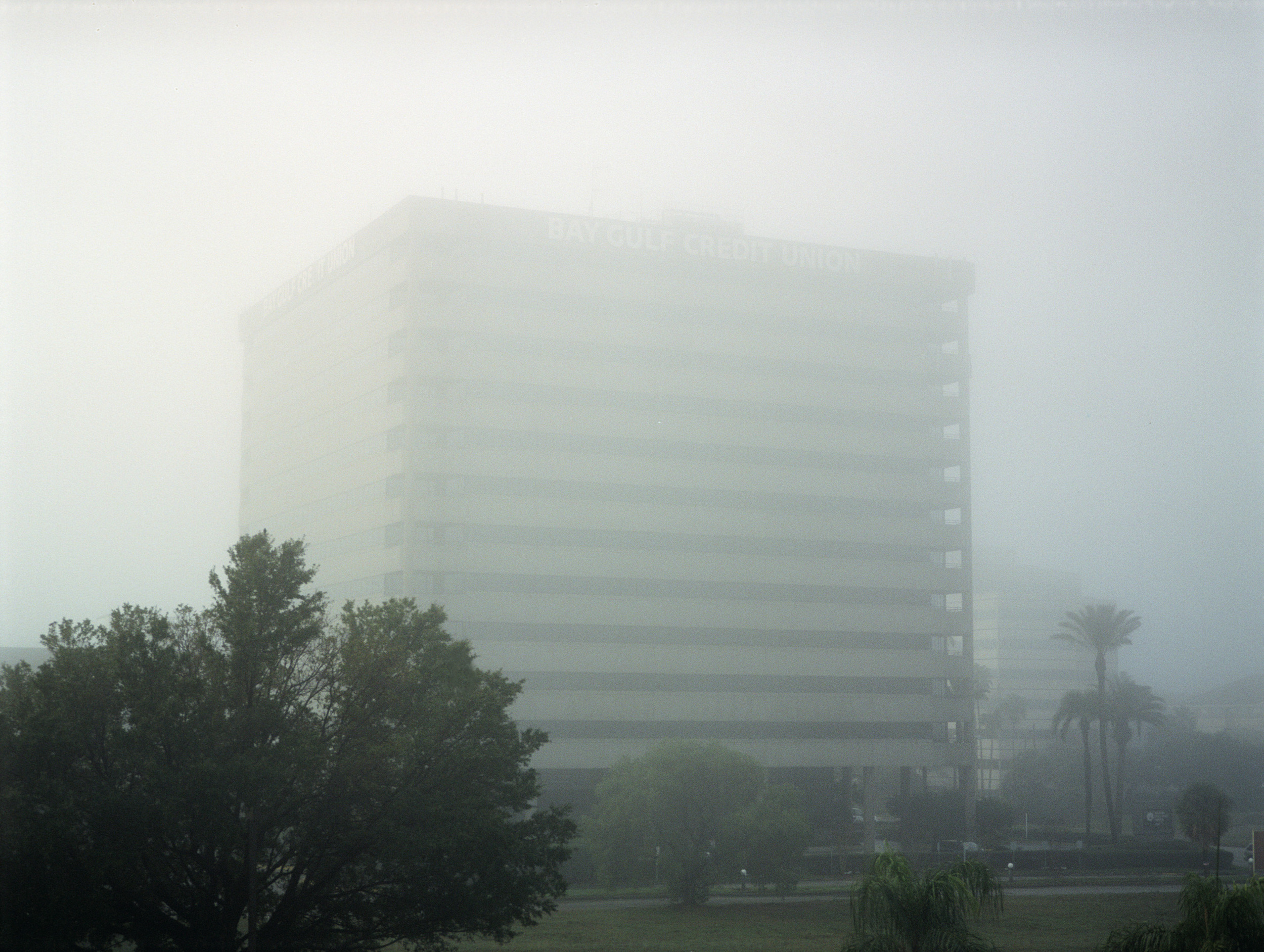 4_foggy-credit.jpg