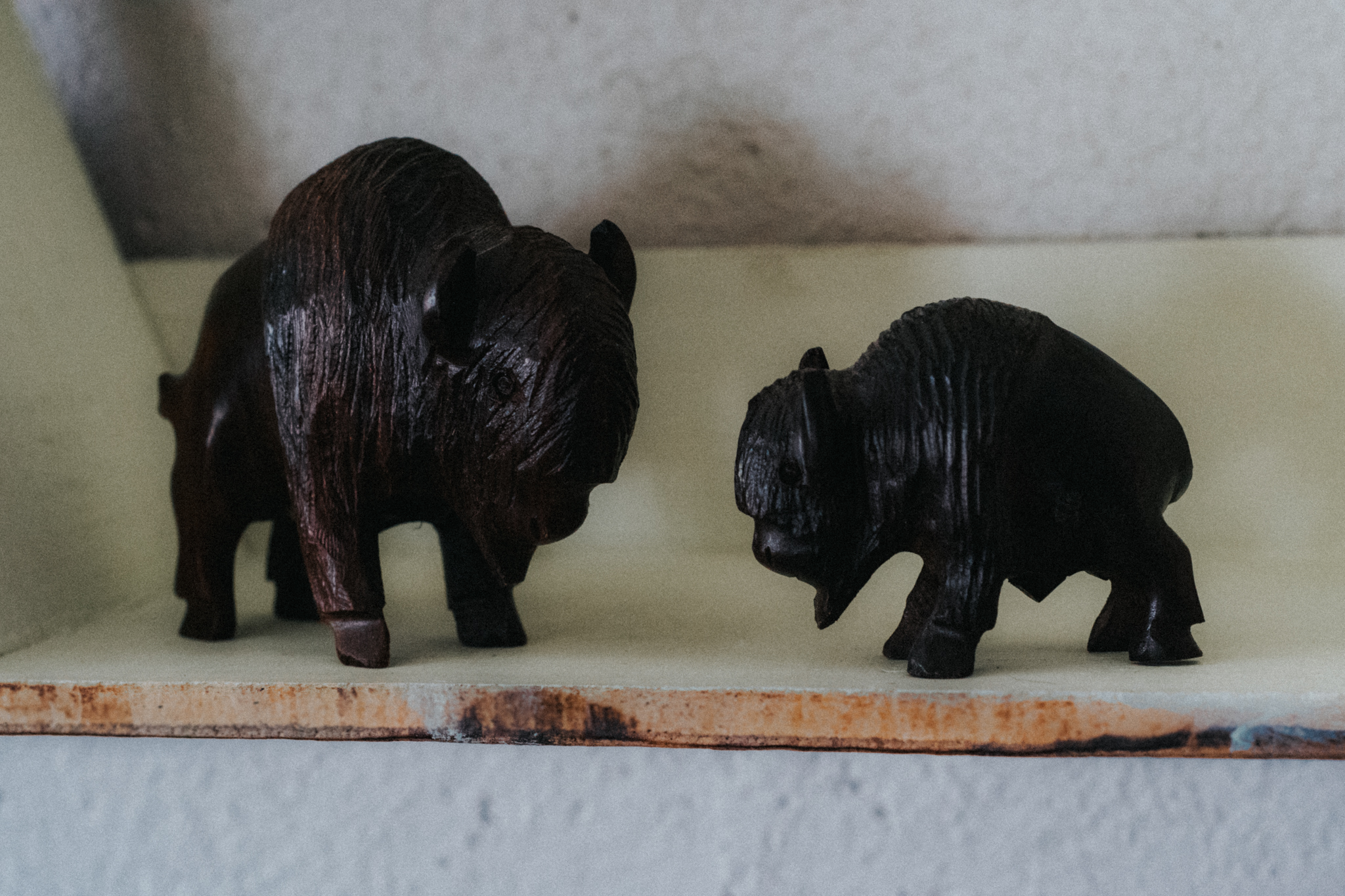 Hand Carved American Bison