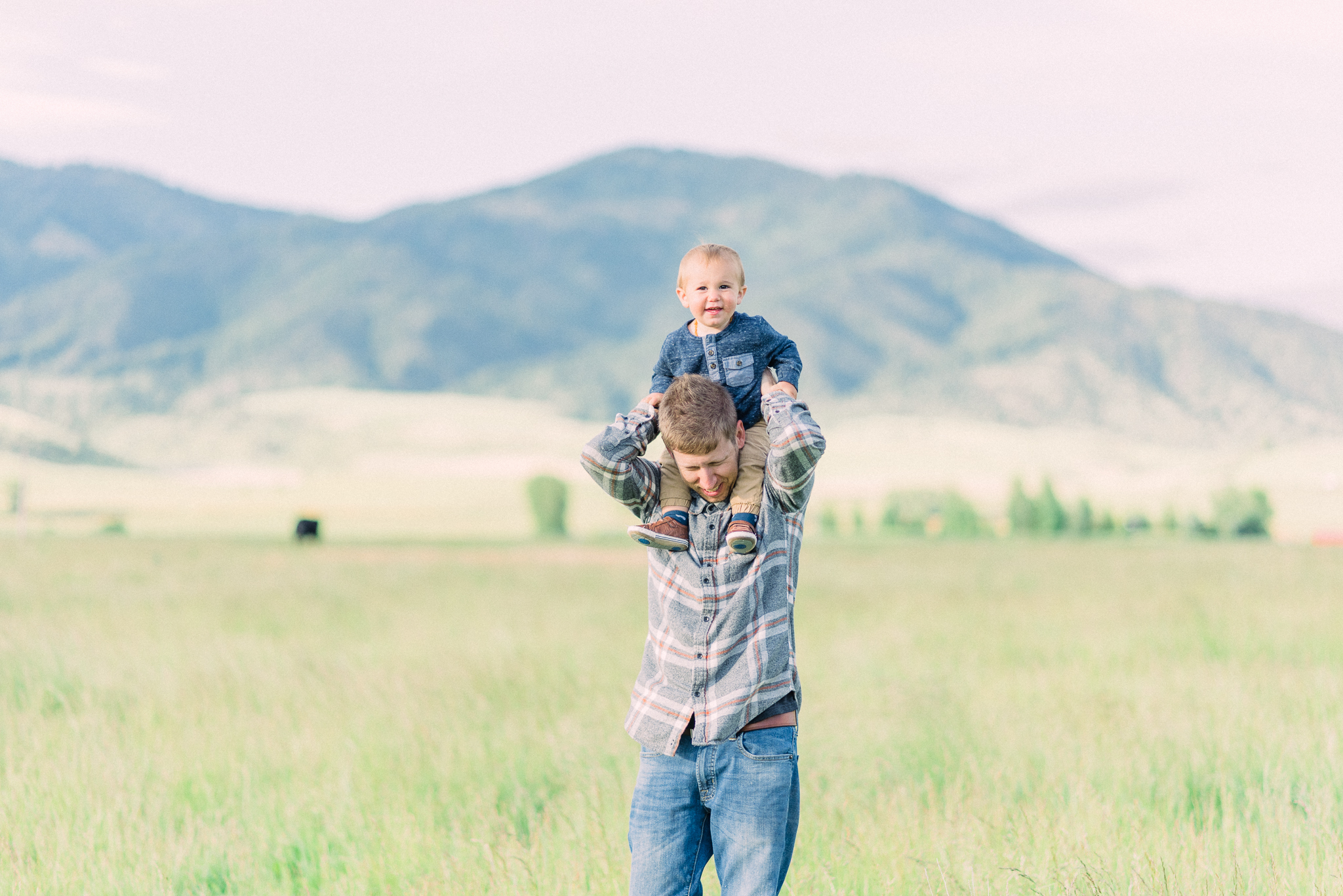 home sweet home, thats darling darling, escape, idaho, life on the farm, photographer, idaho, idahome, lifestyle photographer, swan valley, rainey creek farm, farm life, Scottish Highland, Rainey creek cattle co, black angus, red angus, new farmers, family farm, ranching, cattle ranching, starting a ranch
