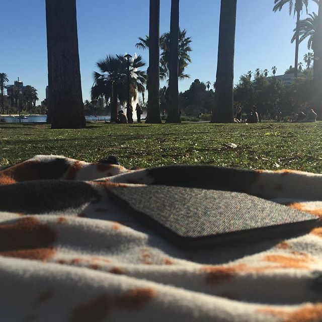 The view from echo park on a blanket laying down enjoying the day #echopark #echoparklake #chillin