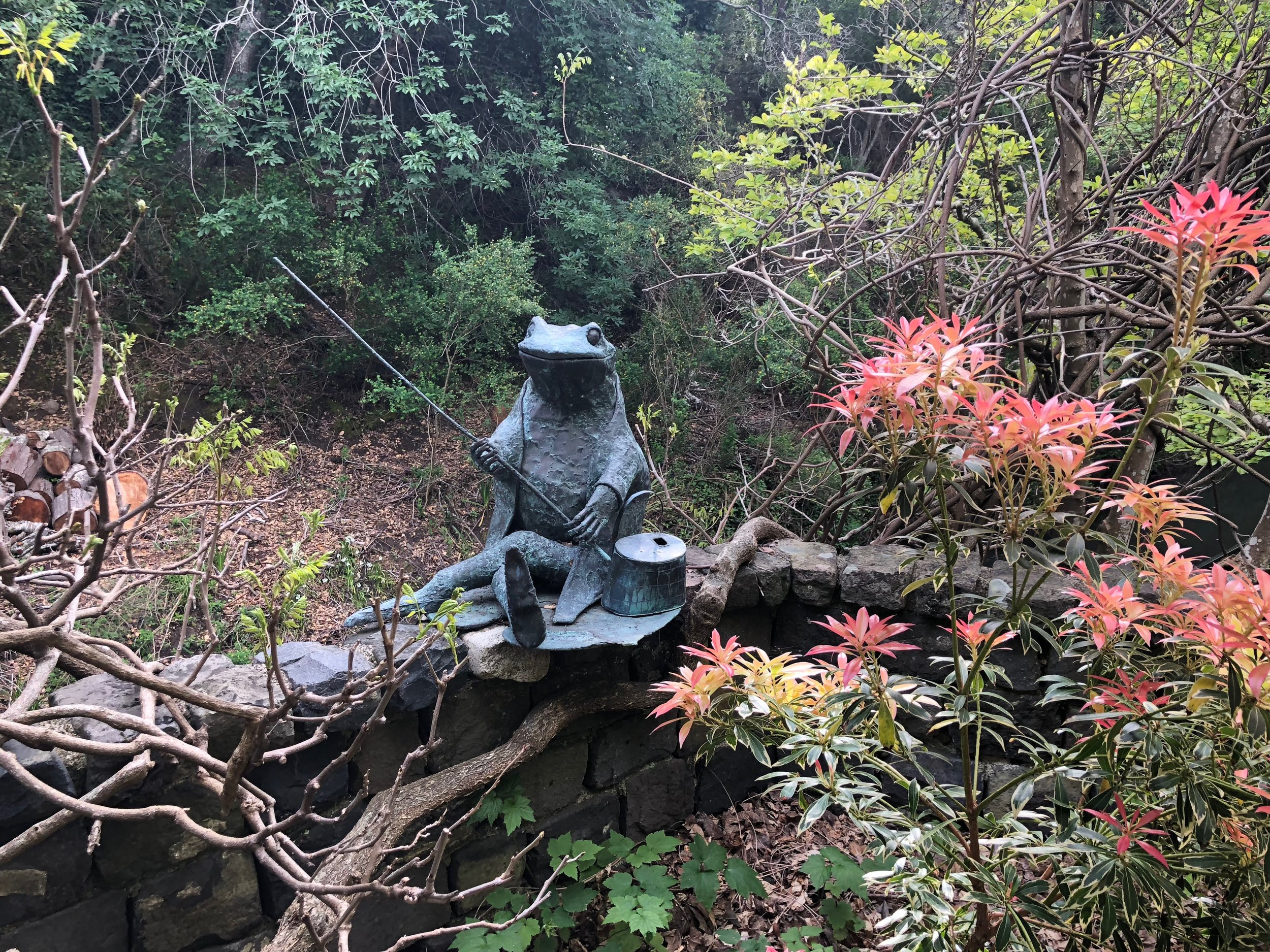 """The bronze frog sculpture 'Jeremy Fisher', a Beatrix Potter figure (sculpture by Albert Guibara) has enjoyed three of Susan's gardens. """"He is the happiest he has ever been here, fishing in the creek."""""""