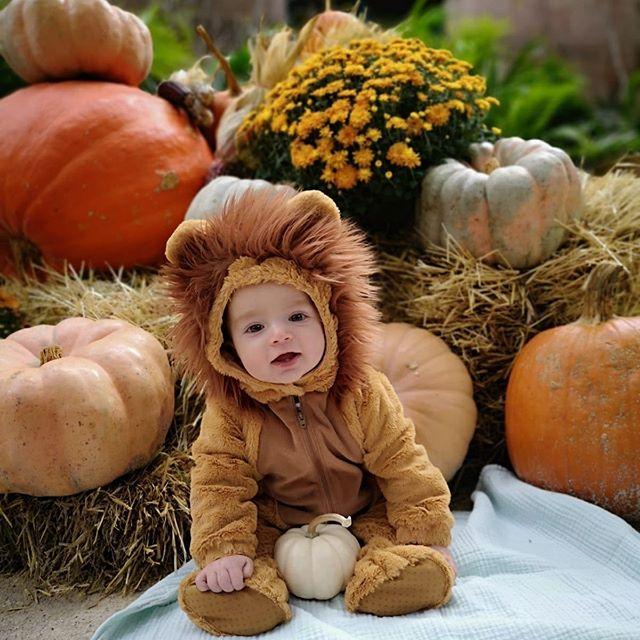 Happy Halloween 🎃🦁 #LLV #firsthalloween