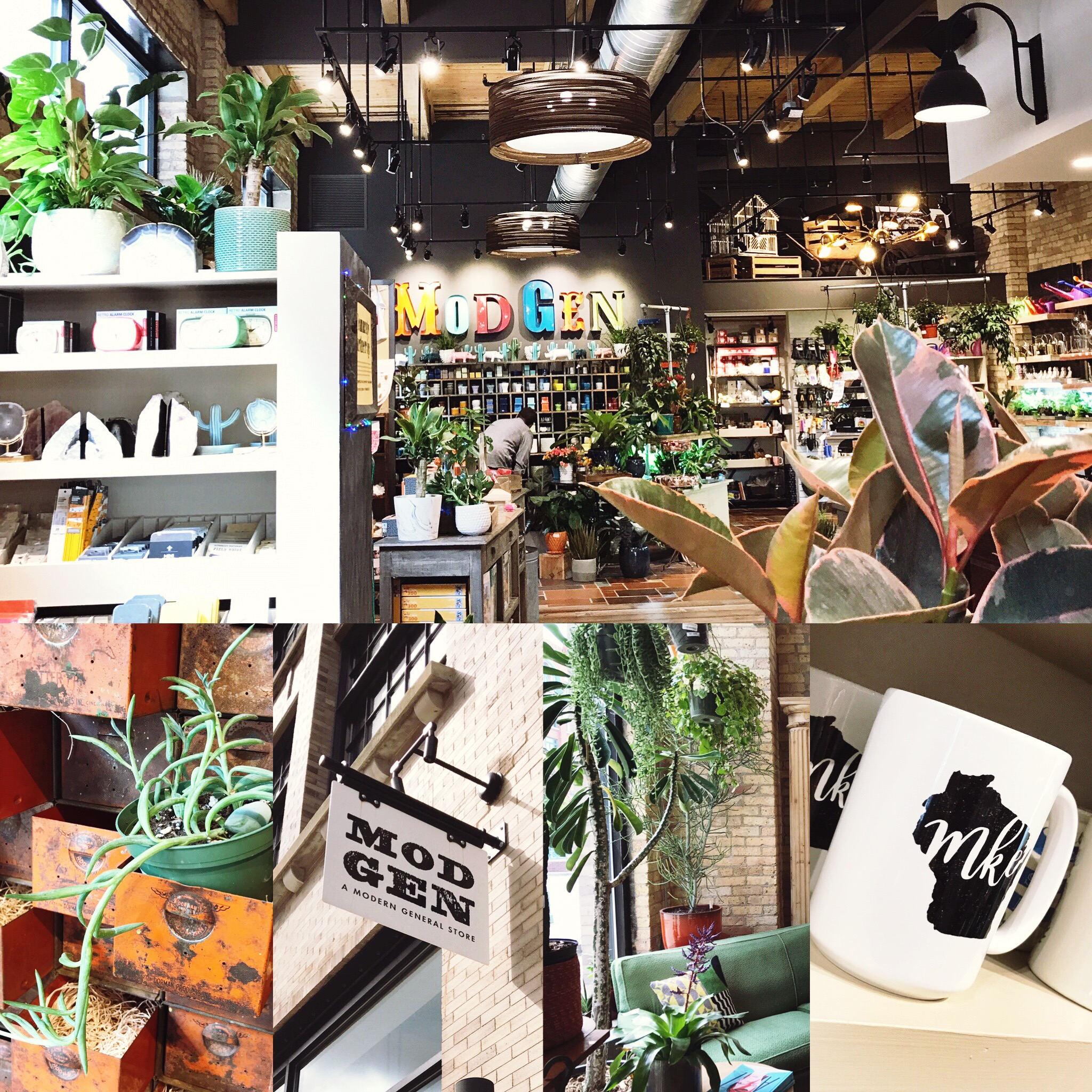 Mod Gen MKE - If you want something for the whole family, why not try Mod Gen? Short for Modern General Store, they carry a mix of the nostalgic and the new, handmade goods and tons of plants to choose from.