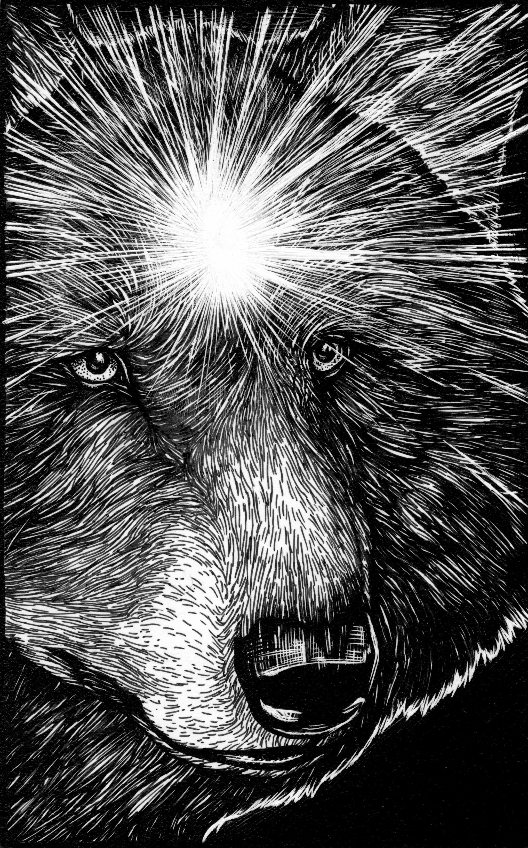 Wolf Third Eye