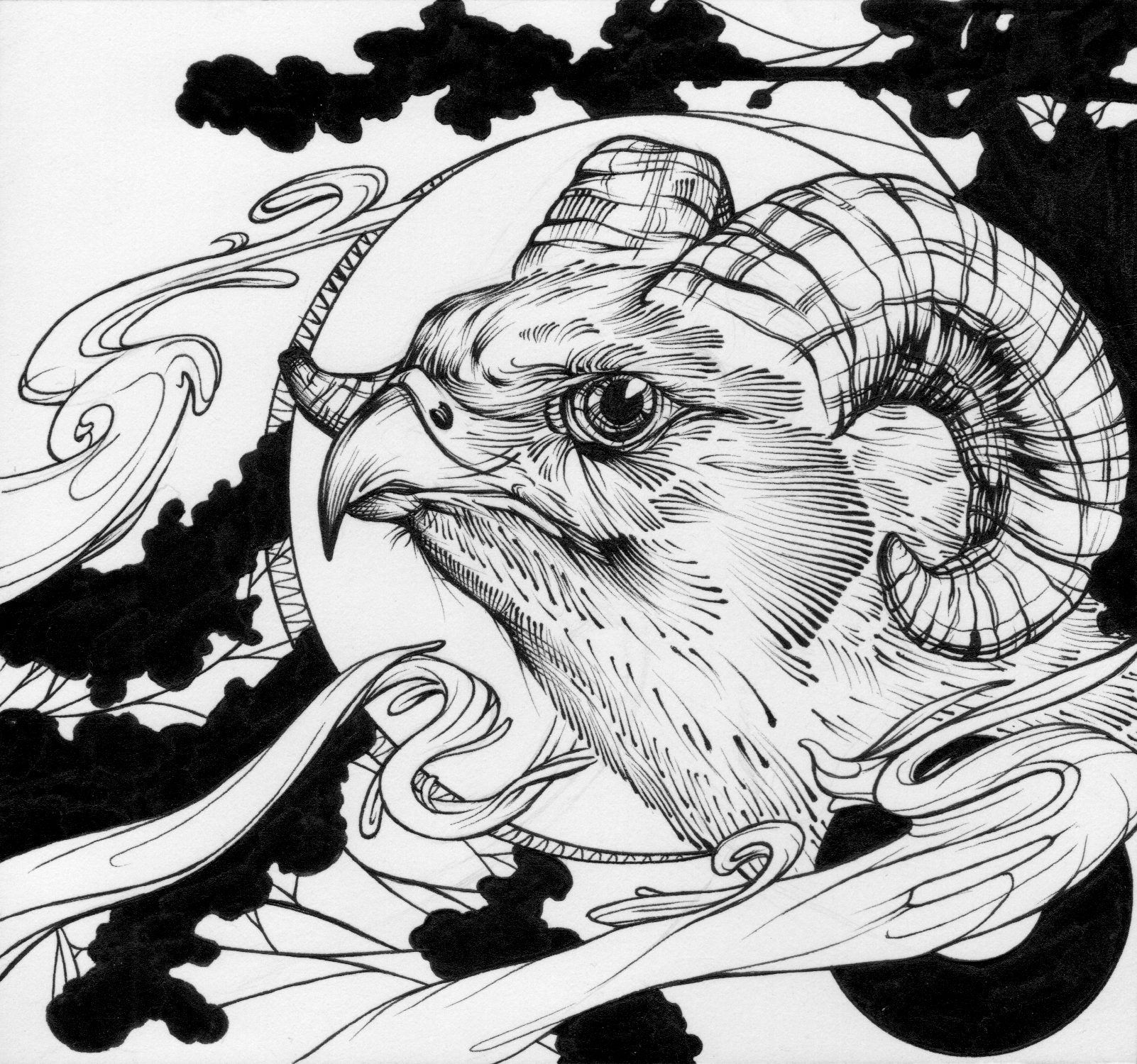owlfacer - 1 (1).jpg