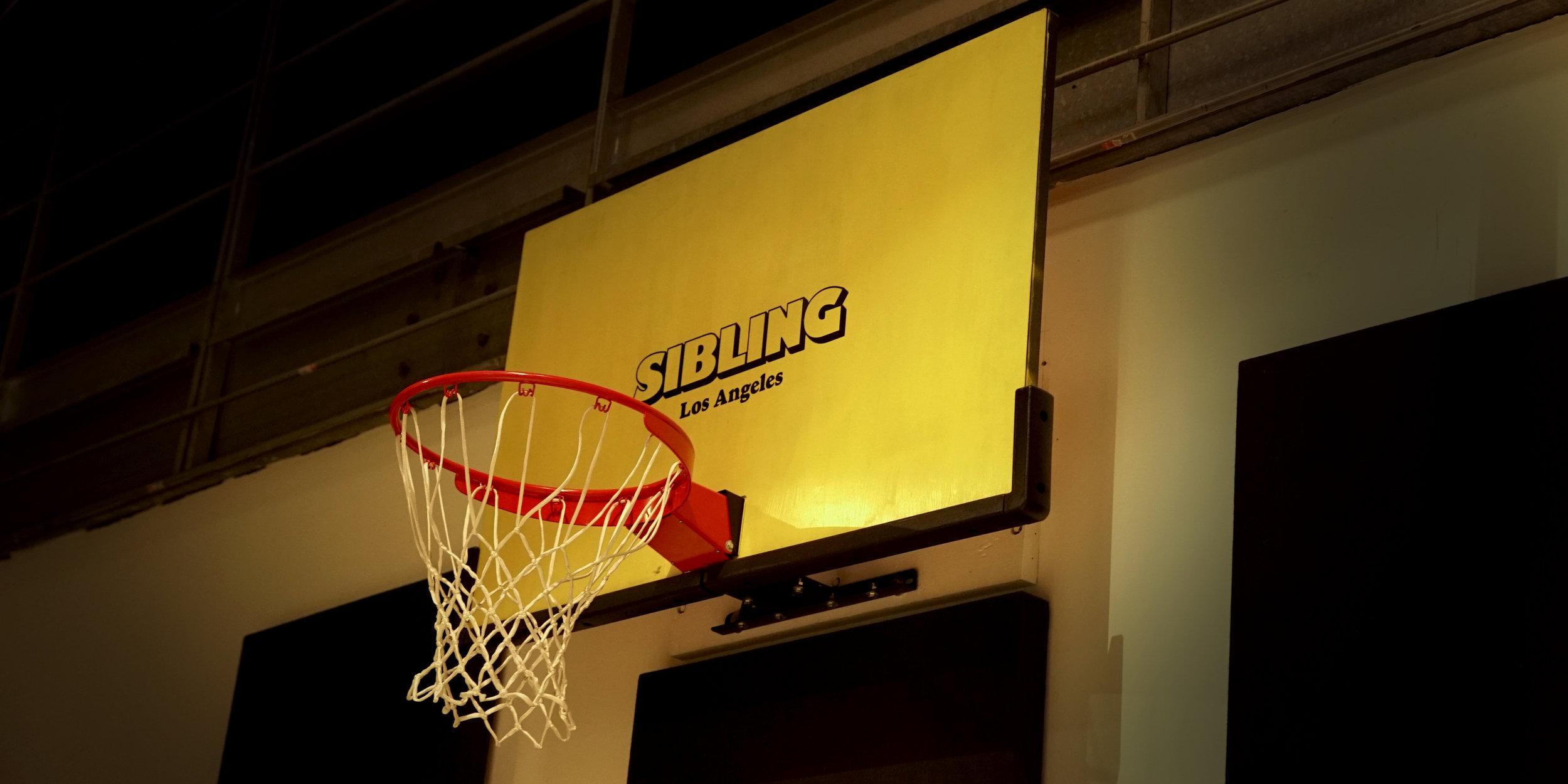 Sibling Basketball Hoop.jpg