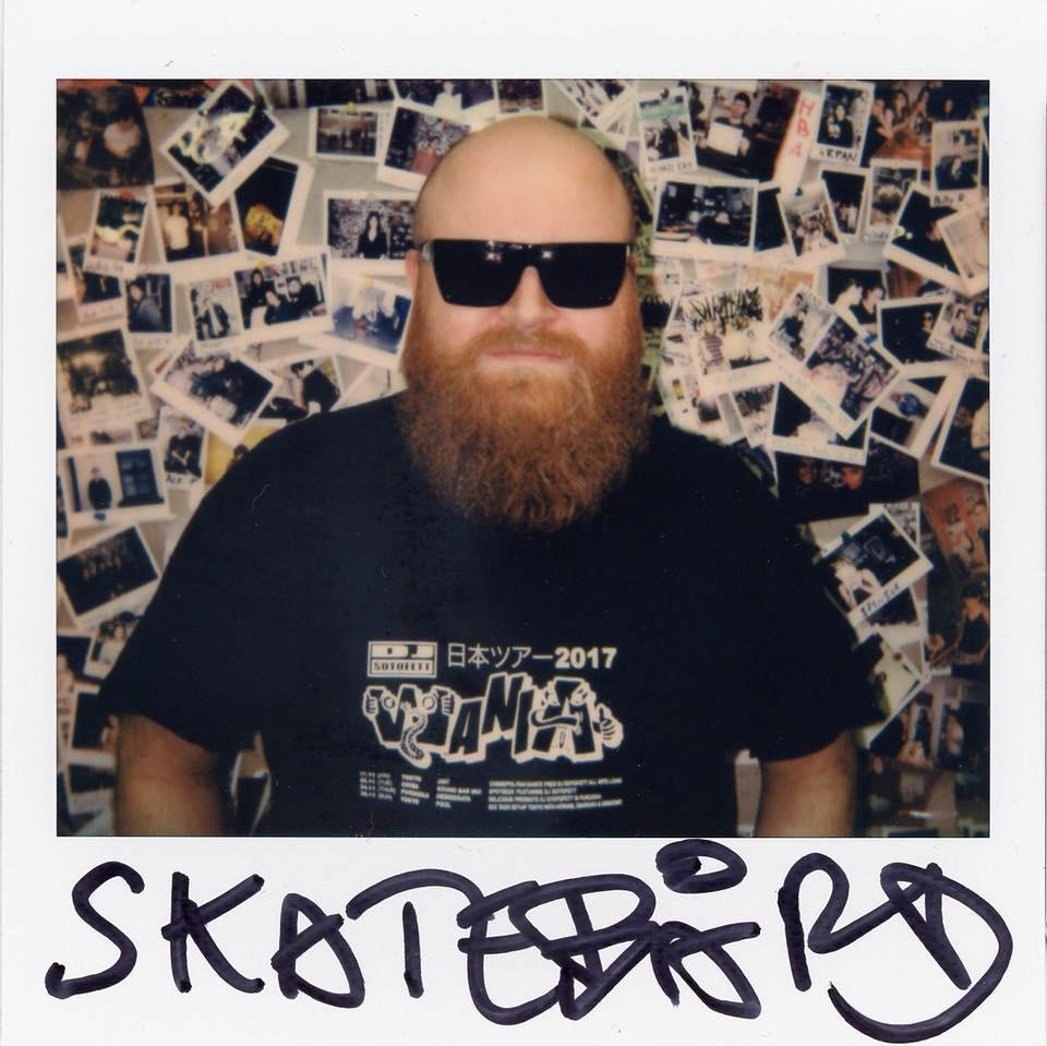 Skatebard_color.jpg