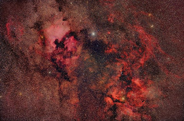 Cygnus  45 mins integration with z6 ha mod+ rokinon 135  #staradventurer #skywatcherusa #nikonz6 #astro #deepsky#rokinon135mm #nightscape #california