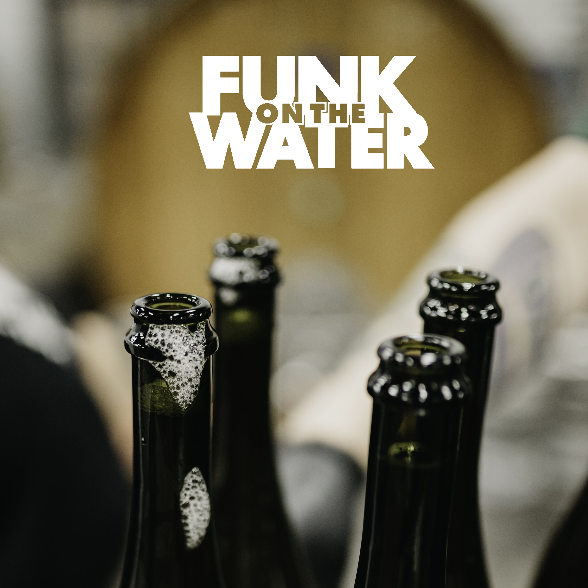 Flyer for Funk on the Water