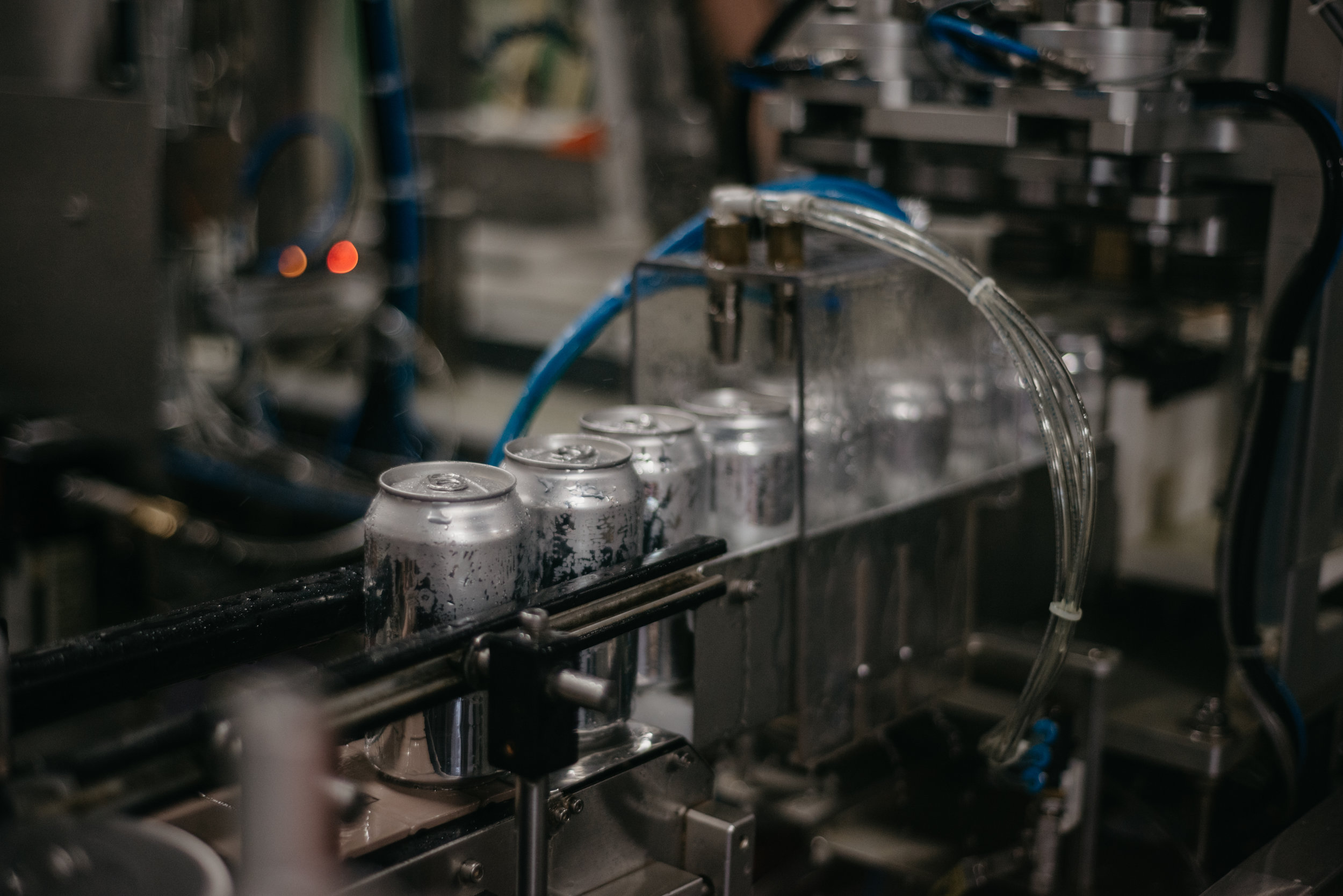 Photo of cans on the canning line