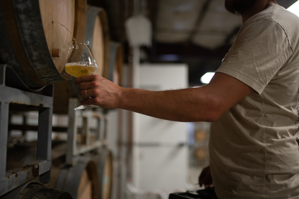 Photo of beer being sampled from a barrel in our warehouse