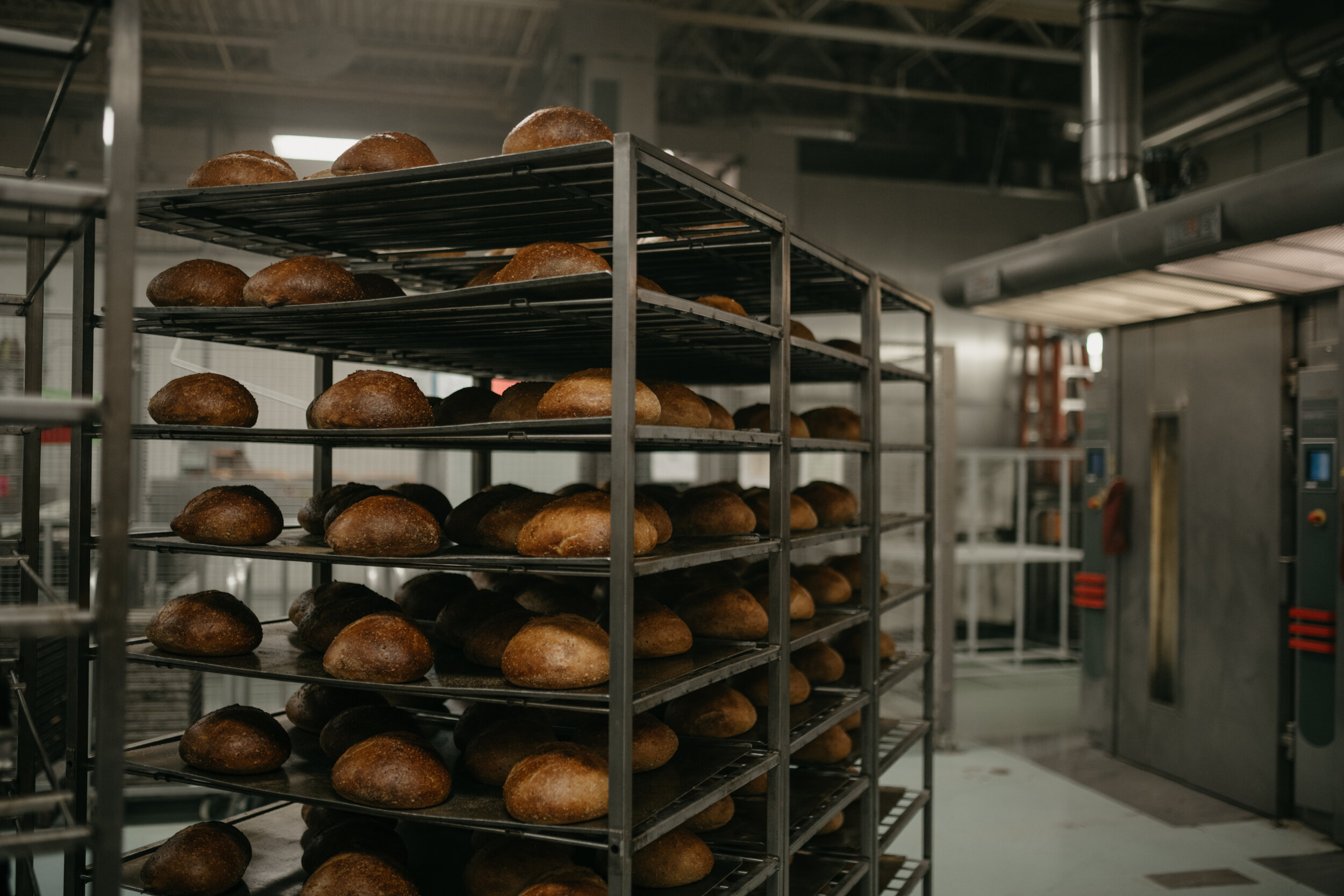 Bread_Alone-3.jpg