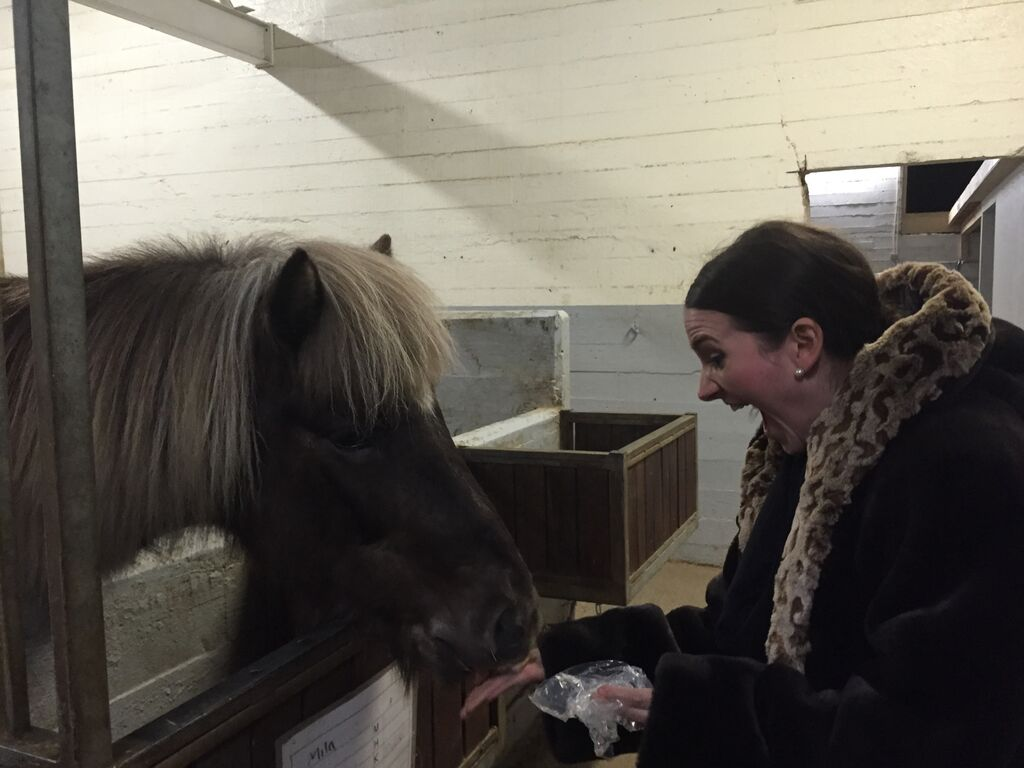 I also hung out with ponies one day and they melted my heart