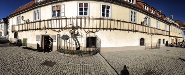 This is it! The oldest vine in the world. Exciting, isn't it?