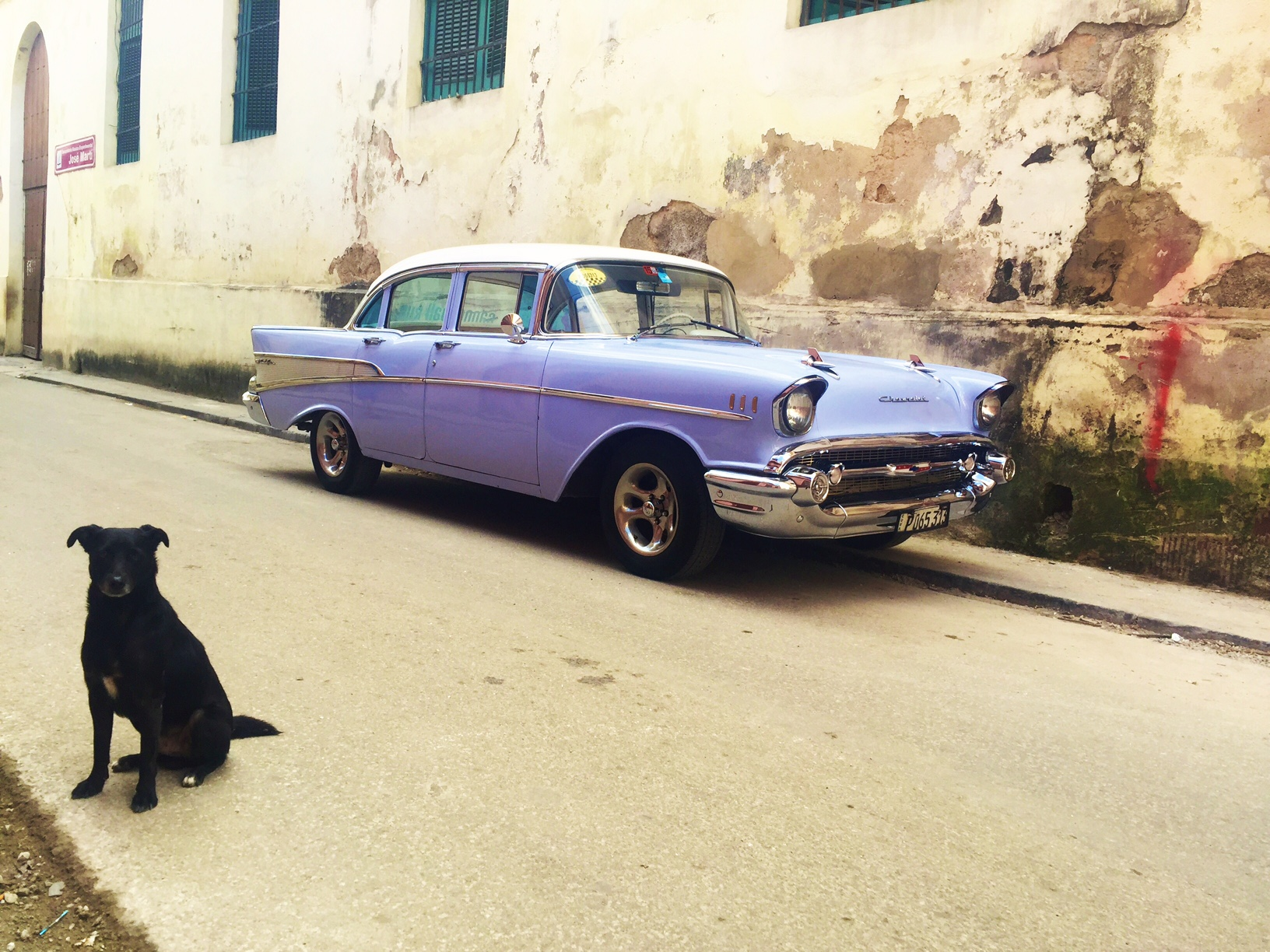 PS Cuba is mad dog-friendly. I saw lots of travelers bring their dogs to Cuba. Everyone loves 'em