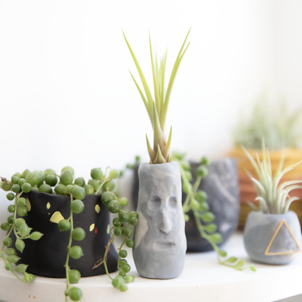 clay pots for plants diy DIY Plant pots with Polymer Clay — NOVA ROCKAFELLER
