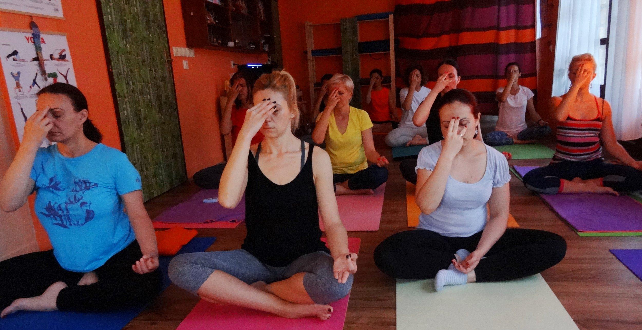 Yoga with Devi Mohan, Datta Tapovan, Serbia - Nadi Shodan pranayama, 2016.jpg