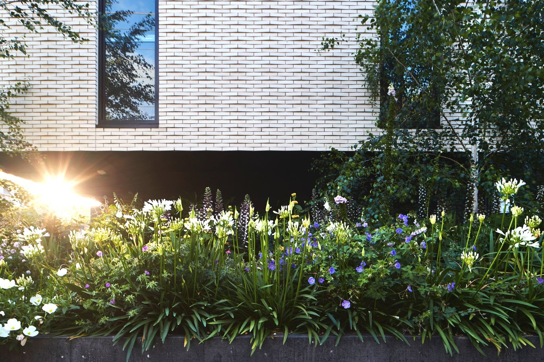 Melbourne_landscaping_03.jpg