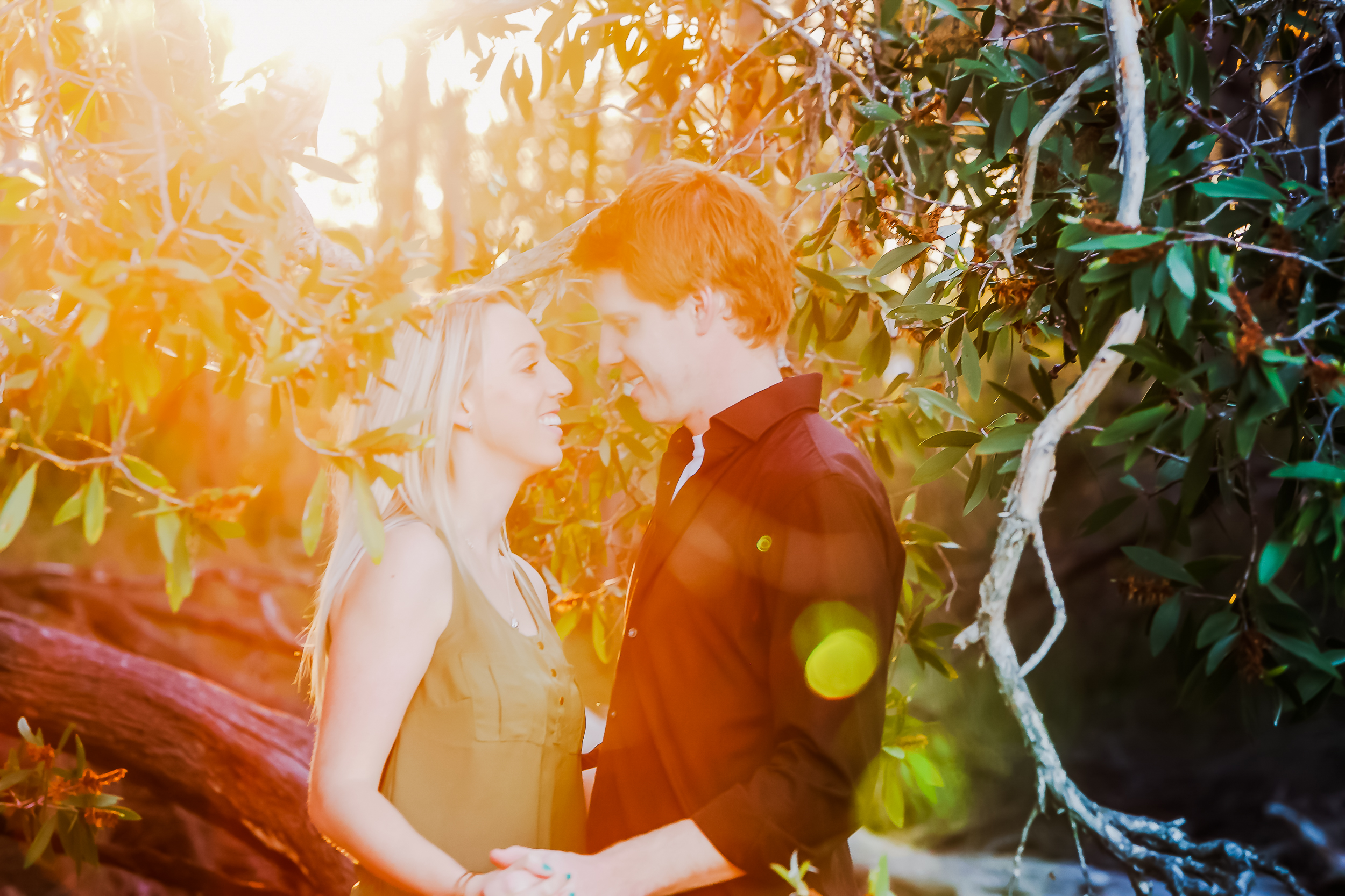 sunshine_coast_engagement11