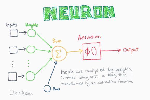 Neuron_web.png