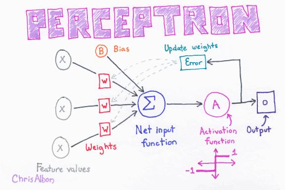 Perceptron_web.png