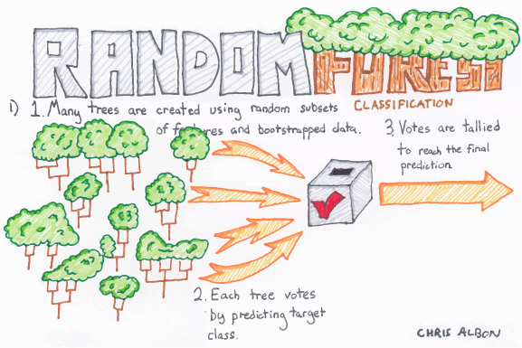 Random_Forest_web.png
