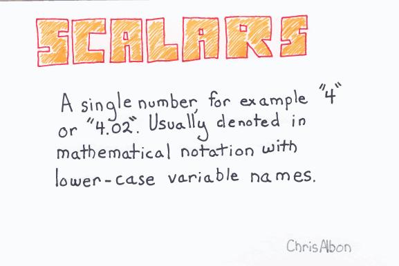 Scalars_web.png