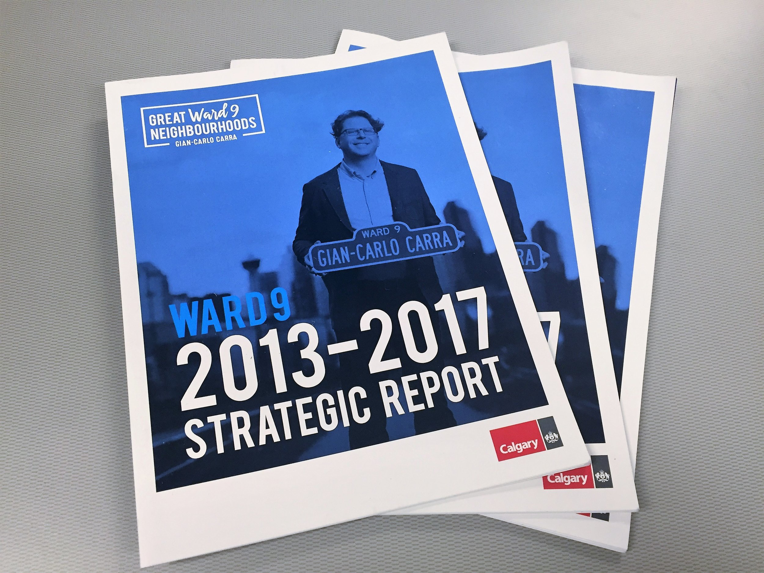This year we'll be setting out the strategic goals, tactics,and agenda for each Ward 9 community for the next 4 years (2017-2021).