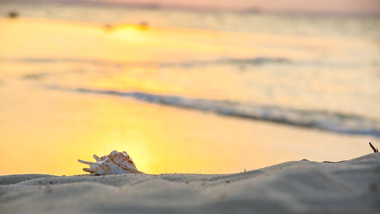 01_Beach_19.jpg