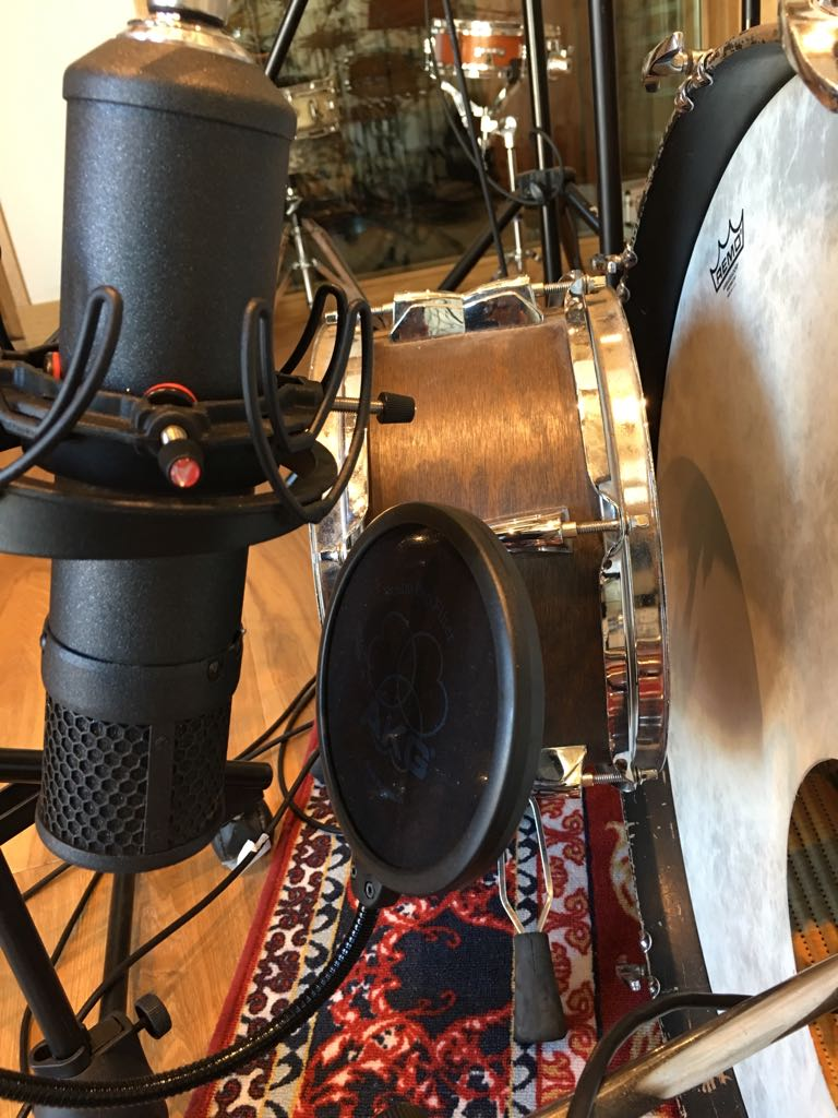 Braingasm_Microfoni_Roberto_Rosu_Studio_Microphones_Roma_3.jpg