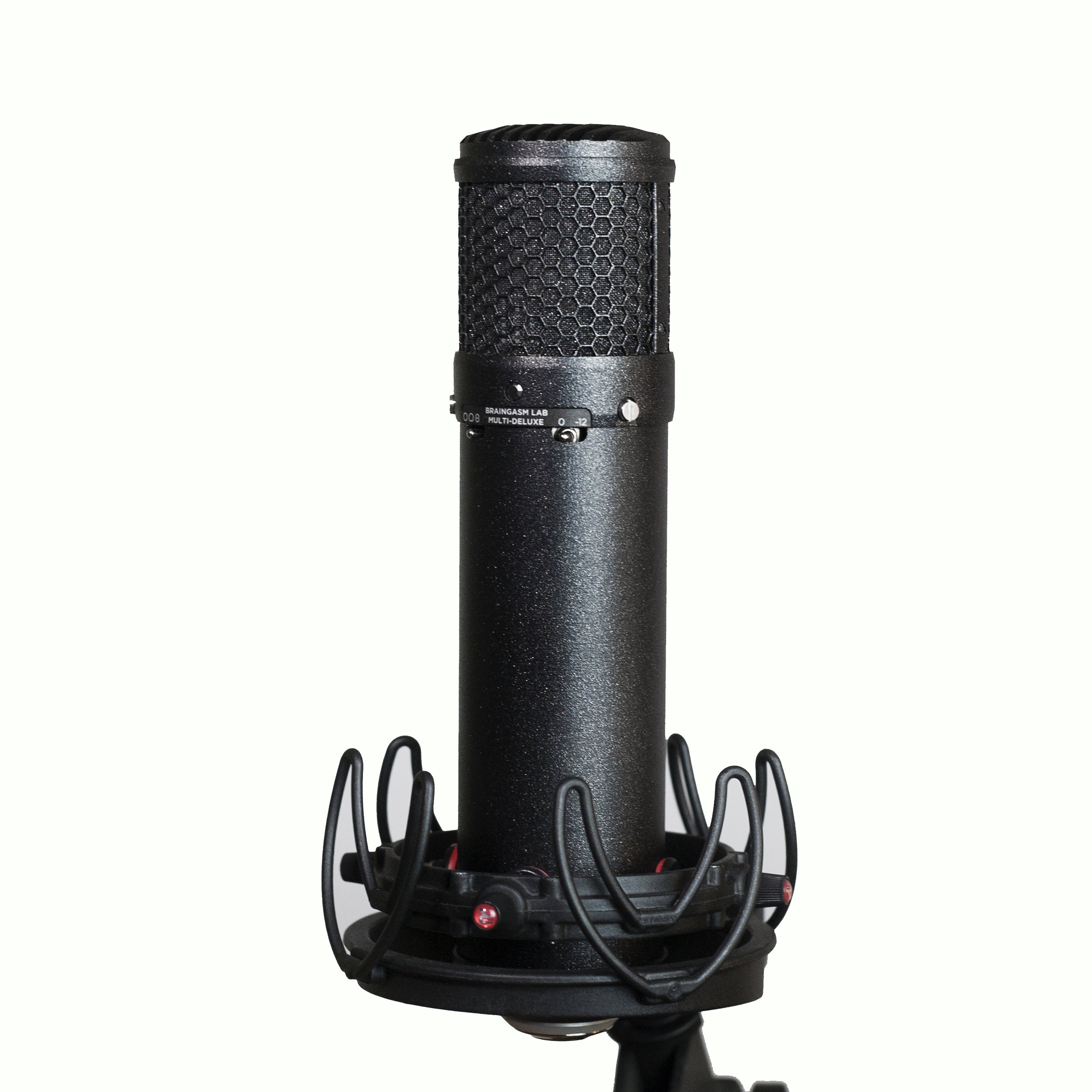 Braingasm_Microphones_Custom_Deluxe_Multipattern_Condenser.jpg