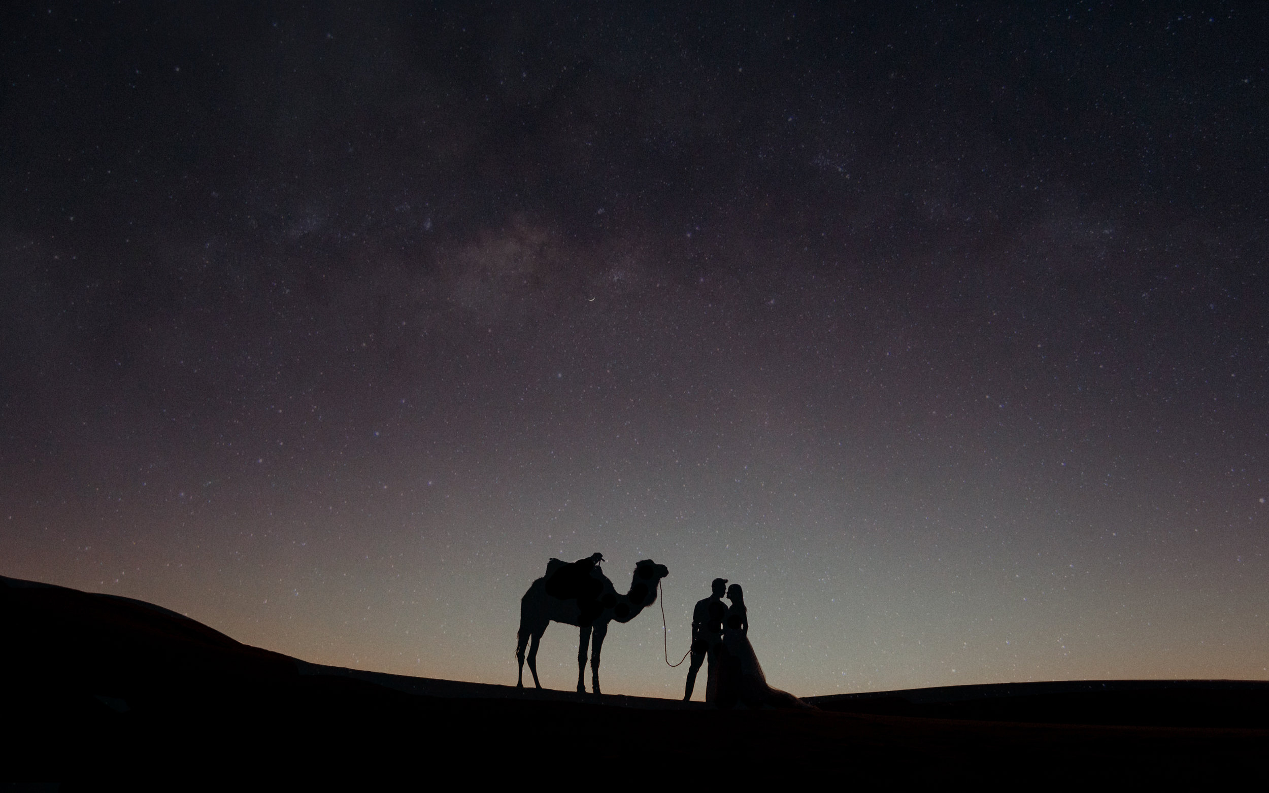 Sahara Desert Wedding Photography