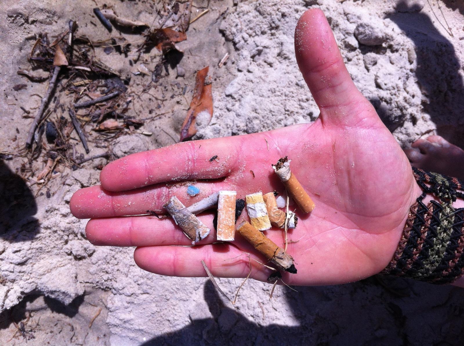 Smoke Free Beaches Byron Bay