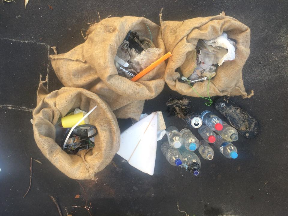 International Marine Debris Conservation