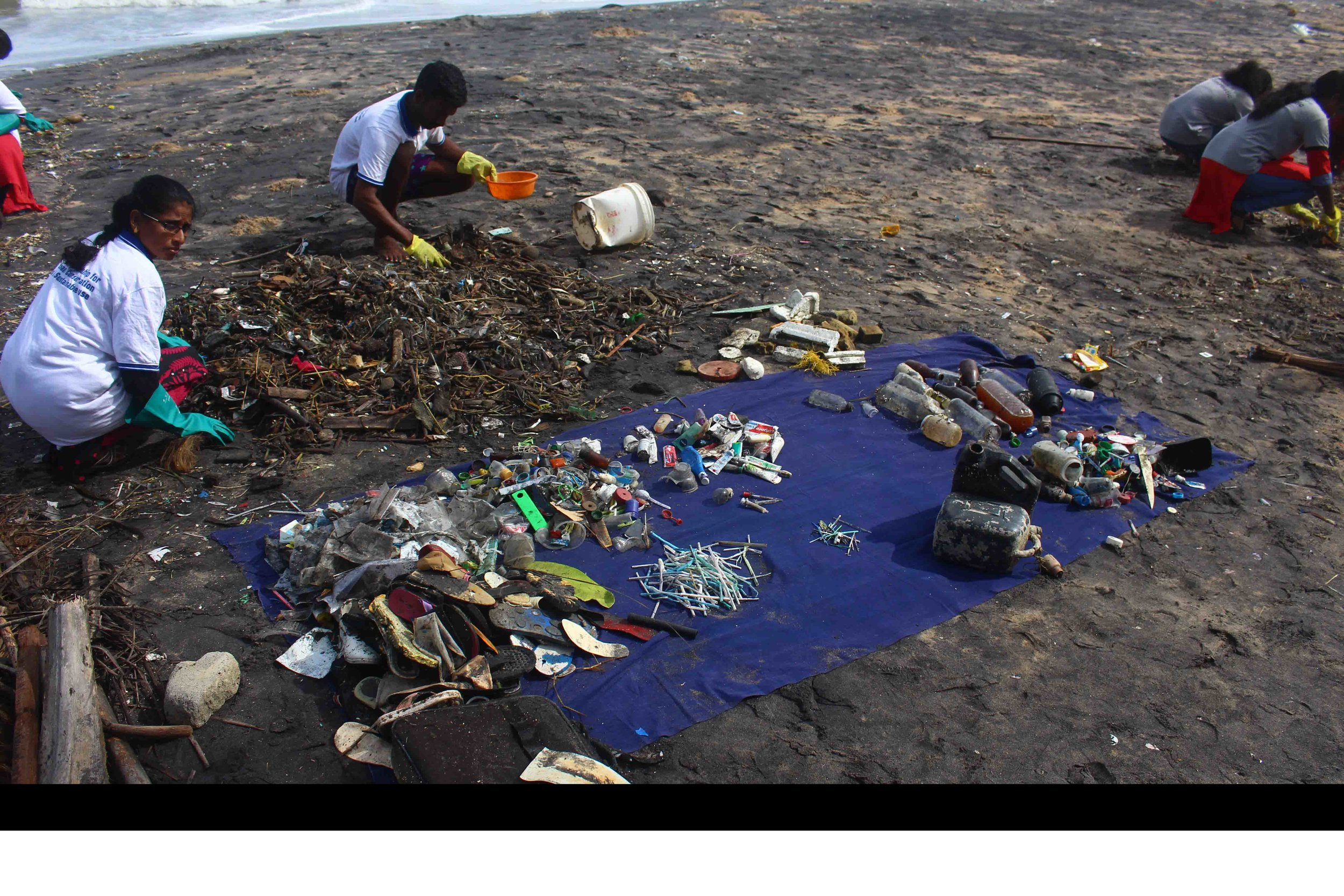 Our India team undertaking a brand audit on one of the local beaches in Vizhinjam.