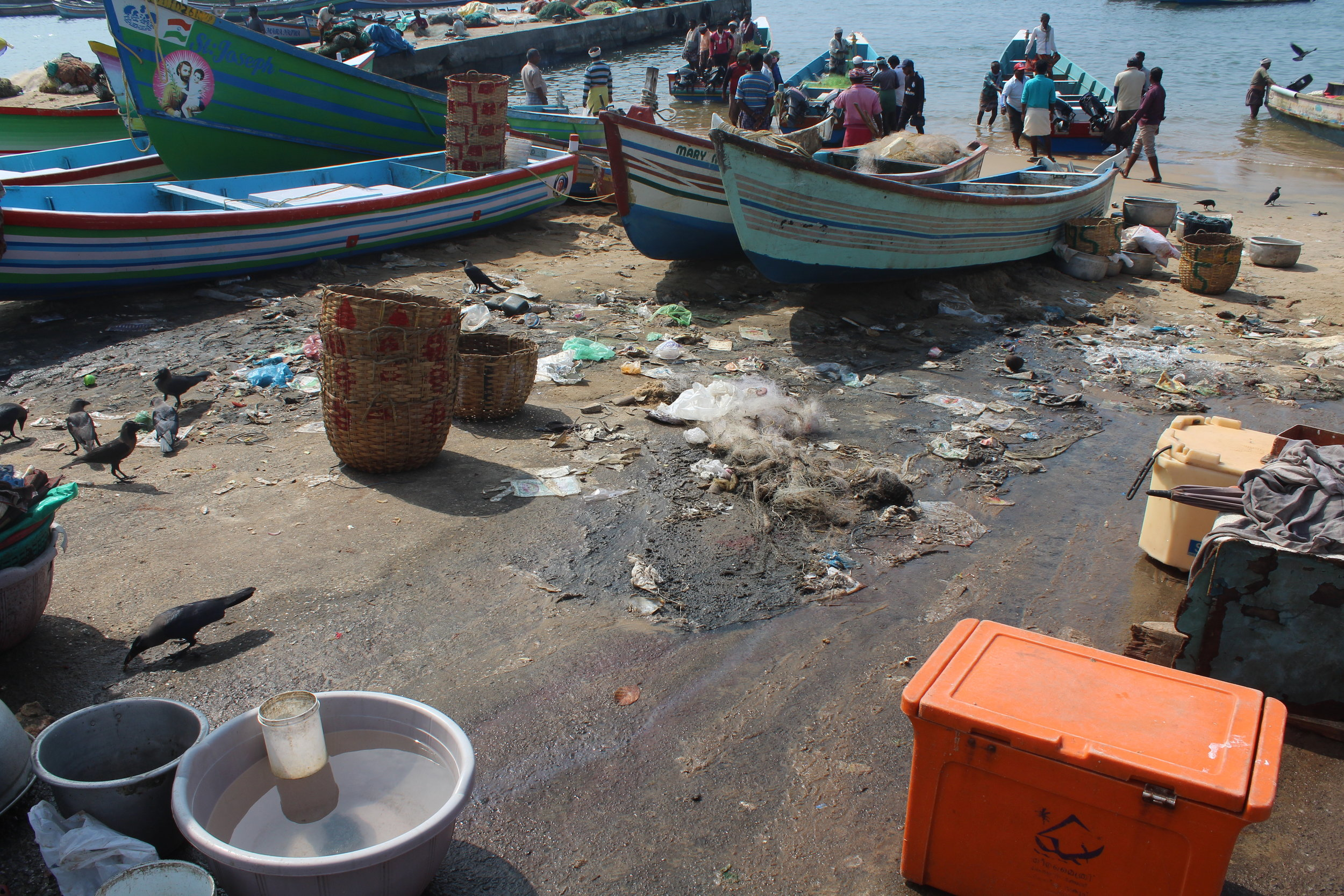 The extent of plastic pollution and waste in Vizhinjam Harbour is enormous. With no bins, everything is discarded into the environment.
