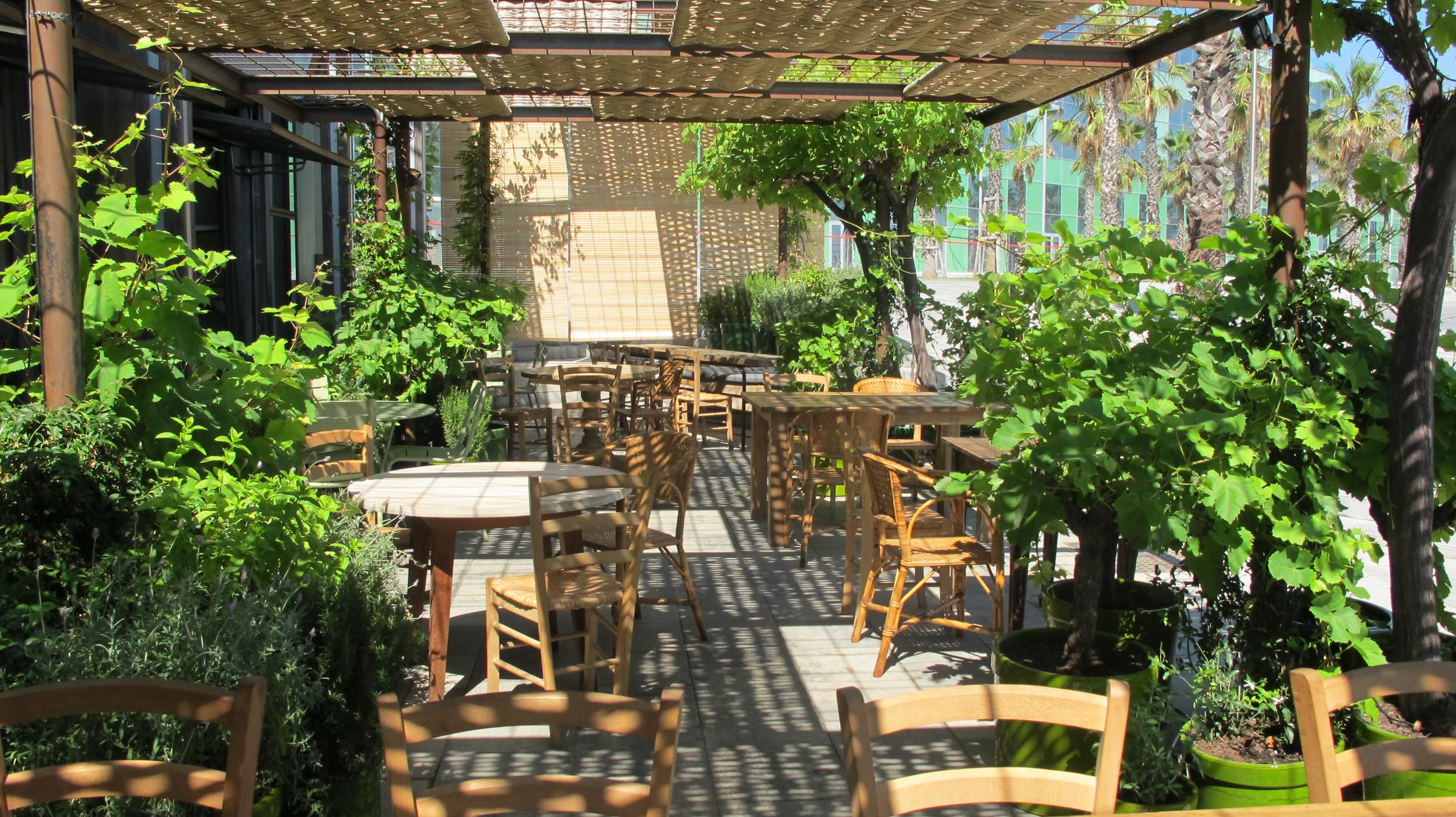Aeland - Paisajismo - Landscape - Barcelona - Restaurant - Gallito - Grupo Tragaluz - Garden - Jardin