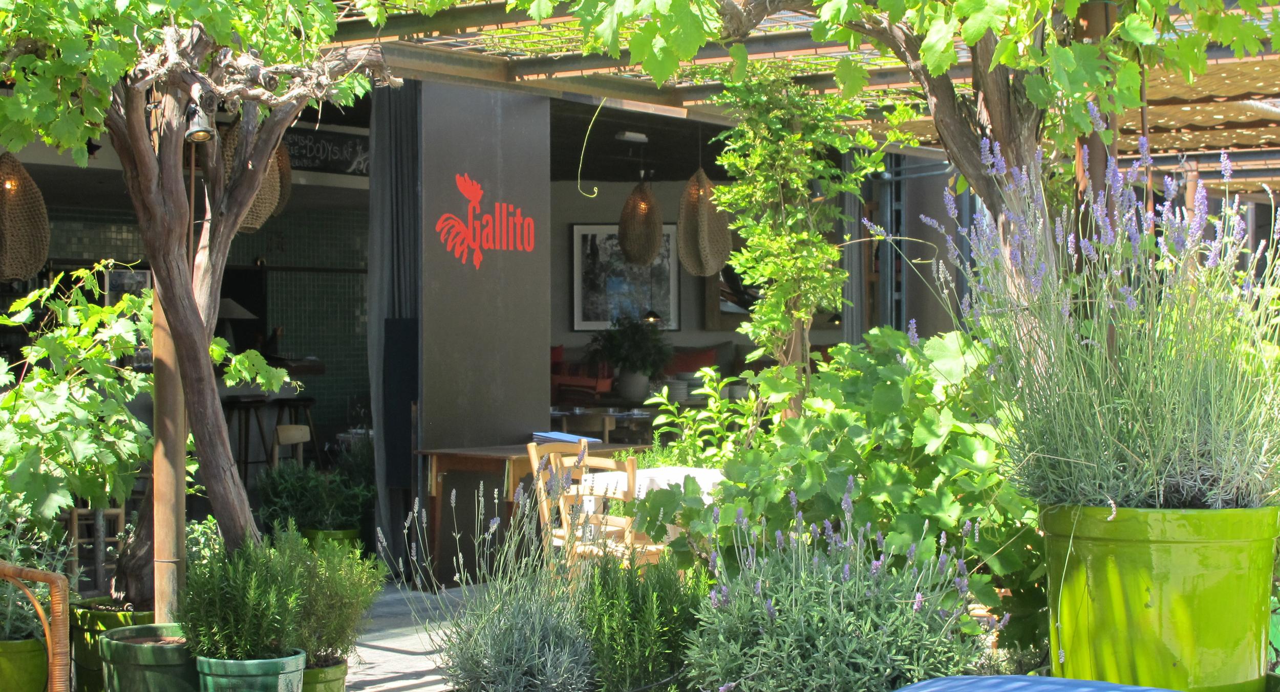 AELAND - restaurant_garden.JPG
