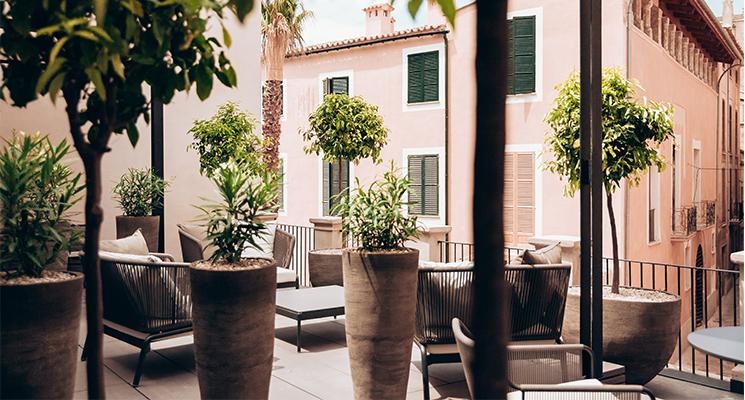 AELAND - restaurant-hotel-sant-francesc-mallorca.jpg