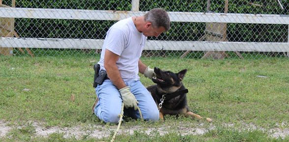 "Van Hendrix K9 Dog Training - ""The successful training of dogs is accomplished through love, dedication and trust.""- Hagen H van Hendrix"