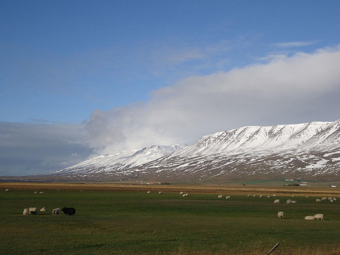 islandia10.jpg